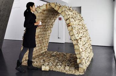 Bienvenue dans la maison champignon soci t l actualit for Traitement champignon maison