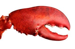 Par-delà la crise du homard, qui va passer, les Îles-de-la-Madeleine ont une éco