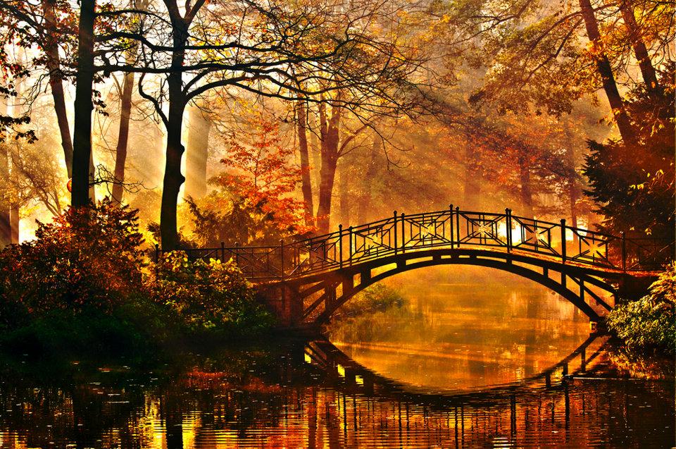Résultats de recherche d'images pour «couleurs d'automne»