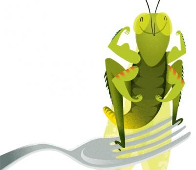 insecte-depart