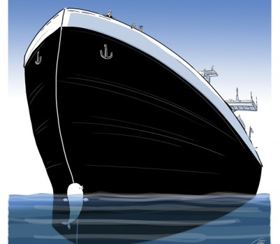 bateau-beluga