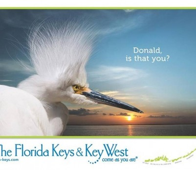 Crédit: The Florida Keys & Key West