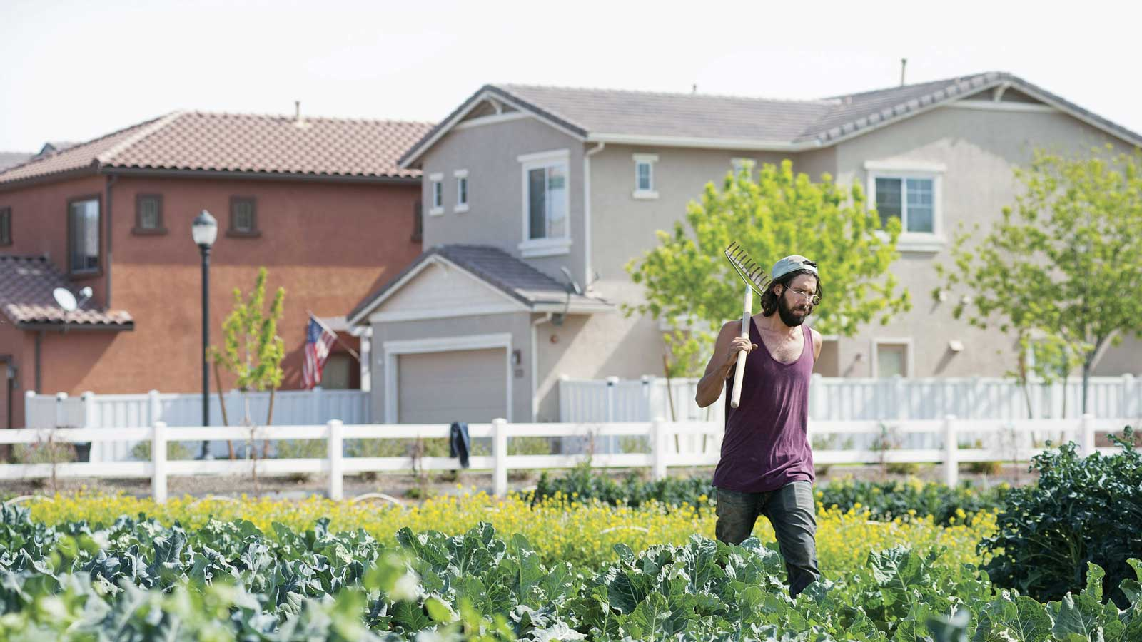 Un exemple d'agriquartier à Gilbert, en Arizona. (Photo: Laura Segall/The New York Times/Redux)