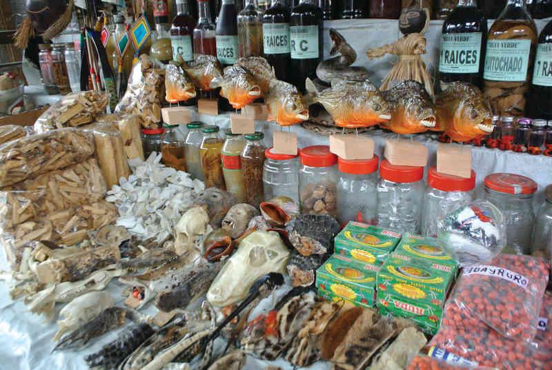 Dans les marchés, les crânes de singe et les pattes d'ocelot attirent les amateurs de magie blanche. (Photo: David Riendeau)