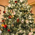 Photo: Pexel  https://www.pexels.com/photo/white-crystal-ornament-on-green-christmas-tree-24571/