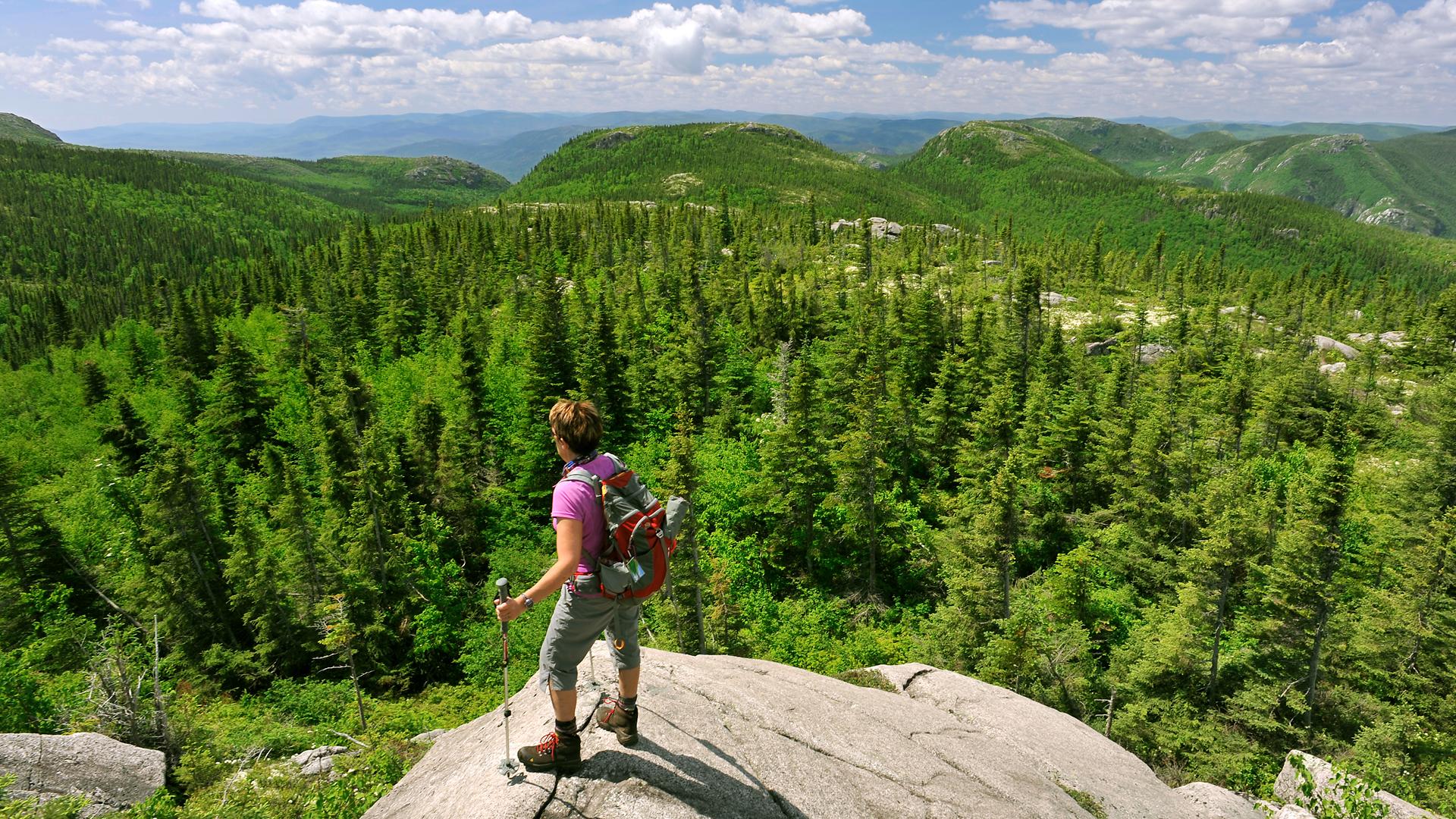 10 conseils pour profiter de la nature… sans lui nuire